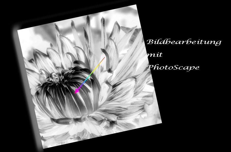 Fotobearbeitung mit PhotoScape