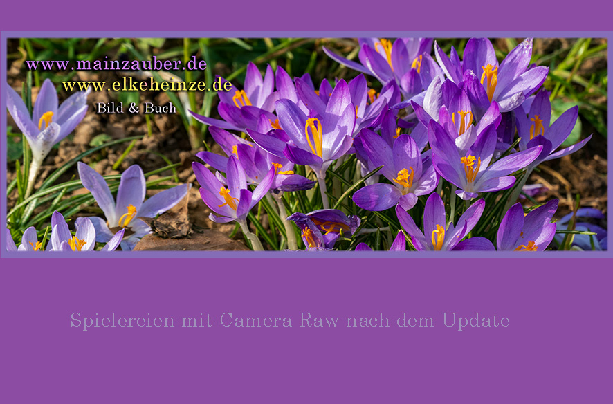 Adobe Update – CameraRaw