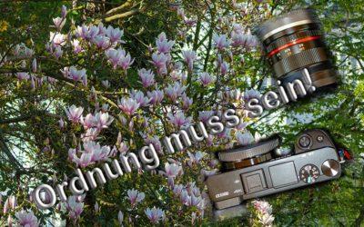 Fotoausrüstung ordnen und aufbewahren